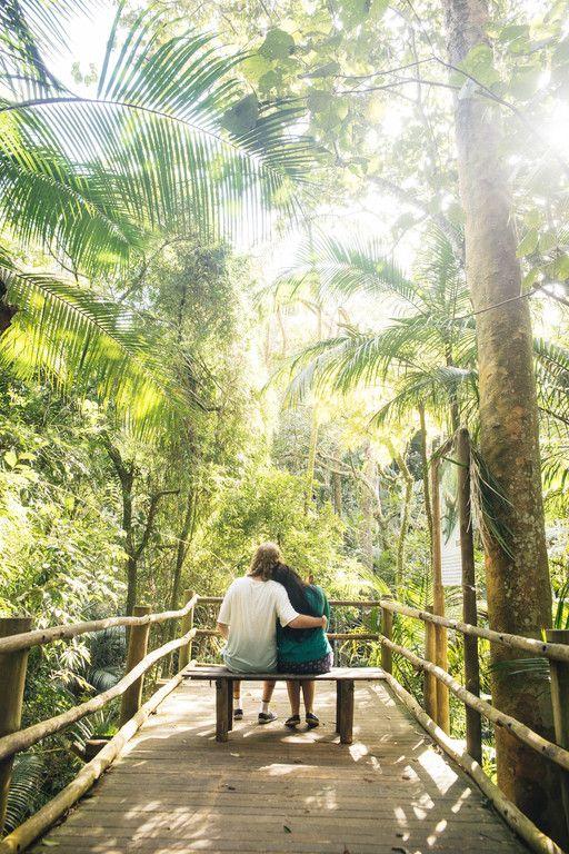 casamento no jardim botanico sao paulo:1000+ ideas about Ensaio on Pinterest
