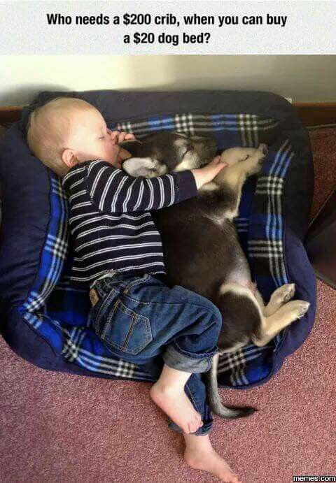Now this is cute!!