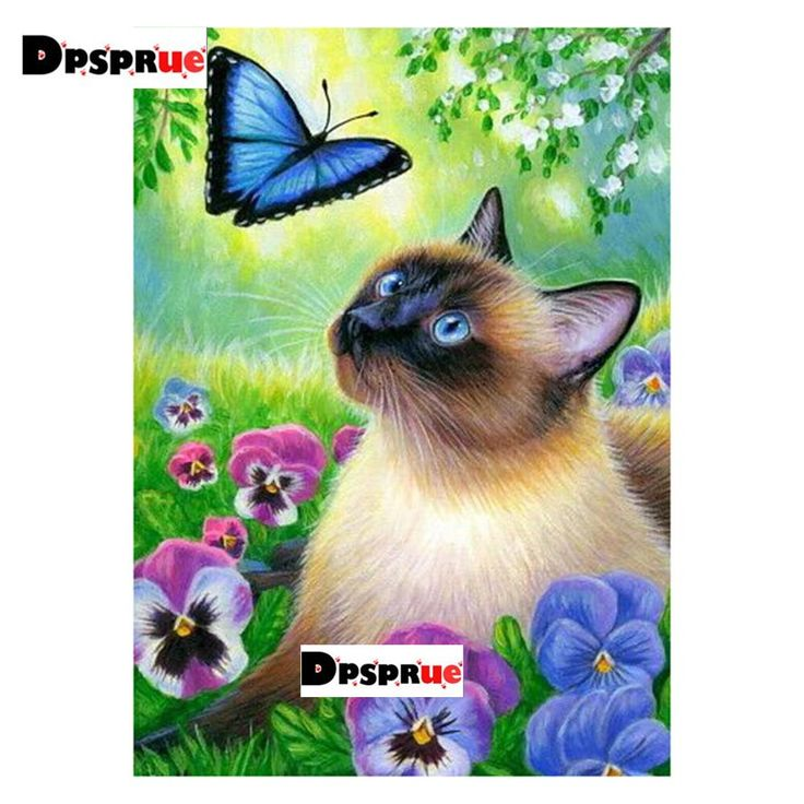 Kexinzu completo cuadrado / redondo 5D DIY diamante pintura gato mariposa flor bordado …