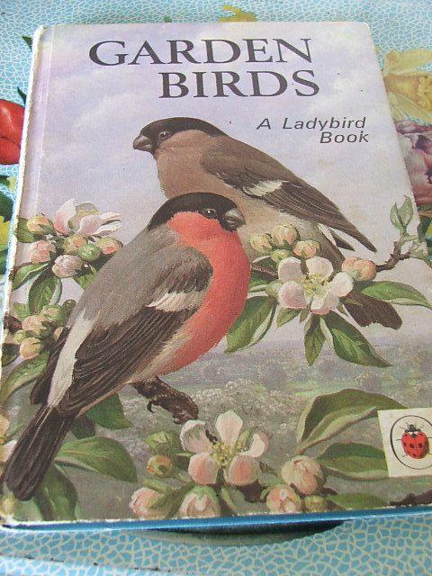 Garden Birds Ladybird Book