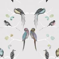 Perched Birds Grey