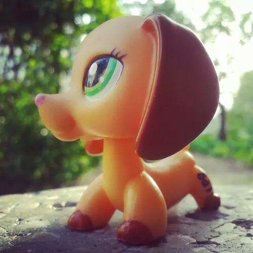 LPS dachshund soo pretty!!