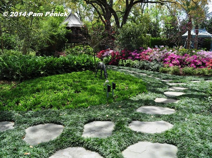 74 best gardening shade wooded area images on pinterest for Open yard landscaping ideas