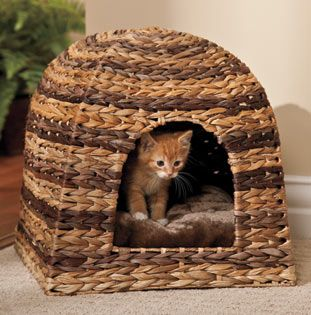 Make an eco-friendly cat bed choice with this natural banana leaf hut. This hooded playhouse provides a darkened, cozy retreat that den-seeking cats will love.