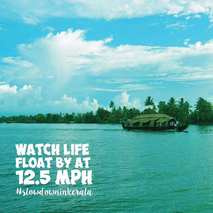 Watch life float by at 12.5 MPH. #slowdowninkerala