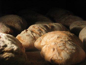Il pane Toscano verso il Dop (denominazione di origine protetta)