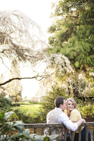Cherry Blossom Engagement Session - Queen Anne, Magnolia, and Pier 70