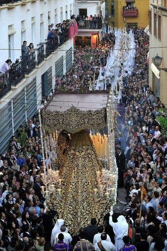 Domingo de Ramos Sevilla Amargura