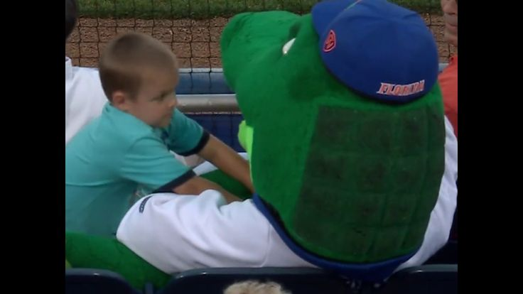Florida Gators mascot takes a foul ball to the head to protect young fan