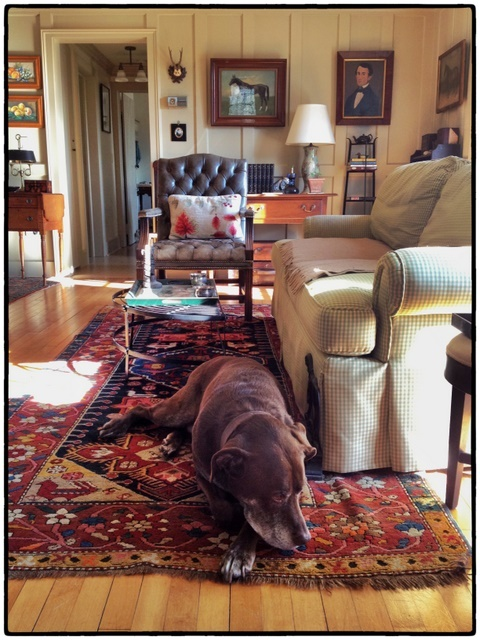 Webster's Favorite Spot, Rosemary Beck, Content in a Cottage