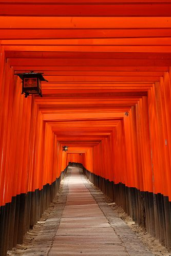 Fushimi Inari shrine Kyoto - one of the most amazing places I've ever been!