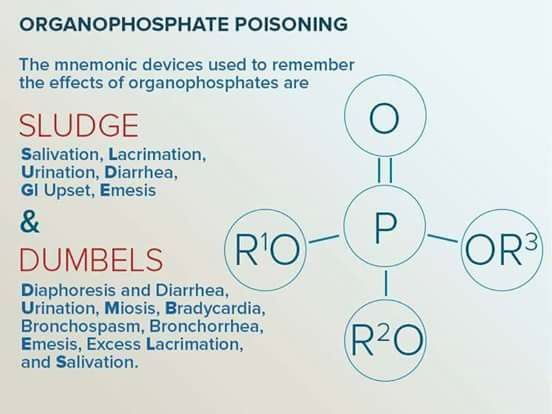 Organophosphate poisoning