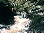 """Blackwater Tubing:  Starting with a steep descent down a """"rope ladder"""" into the almost inaccessible canyon and ending at the suspension bridge in the Tsitsikamma National Park, BLACKWATER TUBING on the Stormsriver is the ultimate """"kloofing"""" experience."""