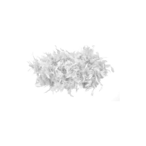 White Feather Boa (3.79 CAD) ❤ liked on Polyvore featuring flowers