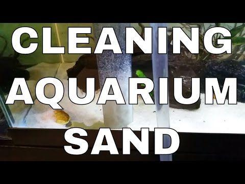 Quick Aquarium Sand Cleaning - How To/DIY - YouTube