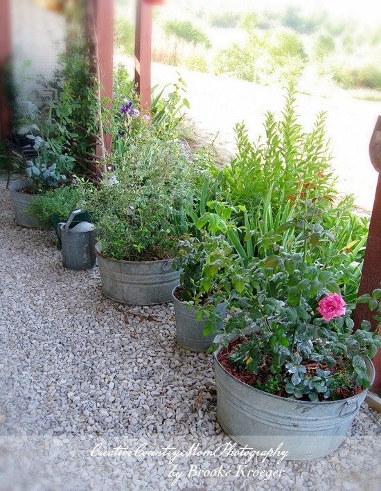 Very Merry Vintage Syle Sheffield Garden Walk Pretty: 17 Best Images About Pea Gravel Patio On Pinterest