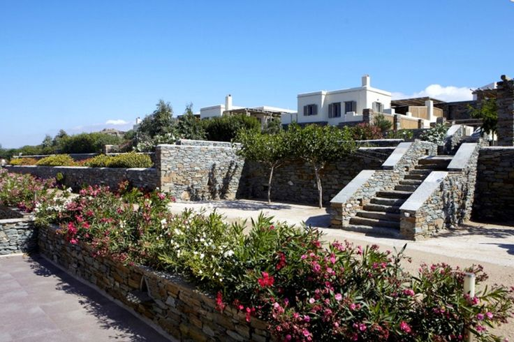 The arrival of spring  in Diles & Rinies Estate in Tinos island! The colours and the scents of the flowers and herbs from our gardens awake your senses and make a spring vacation in Tinos such a lovely experience. More at http://goo.gl/CnQLYl #tinos #tinosisland #Greece #villa #villaintinos #mykonos #mykonosisland #greekislands #summer2016 #visitgreece