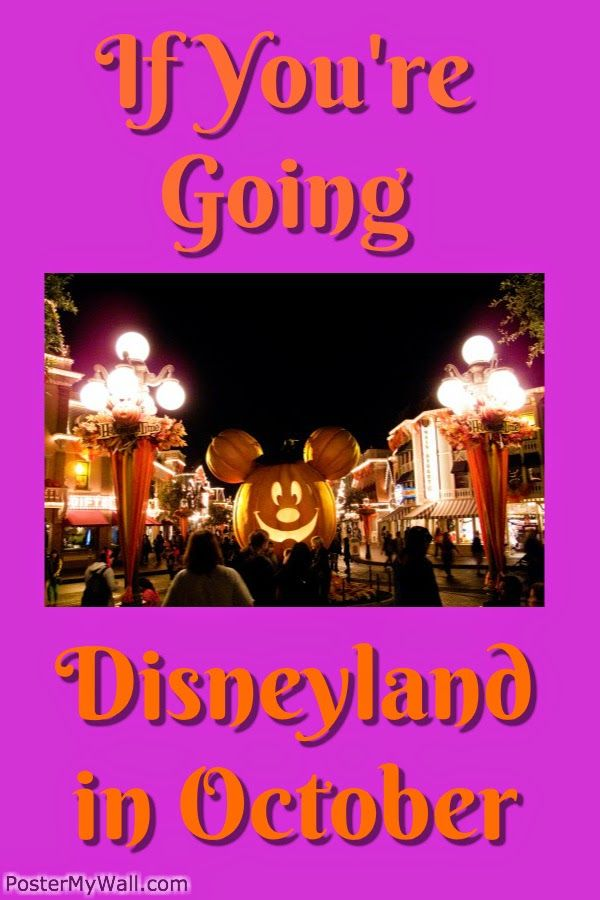 If you're going... Disneyland in October