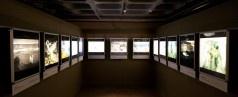 duratrans exhibition - Recherche Google