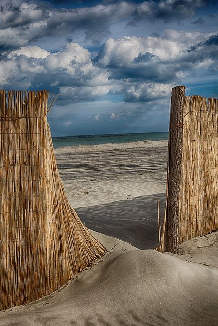 Beach scene with beach fence out of Sea grass