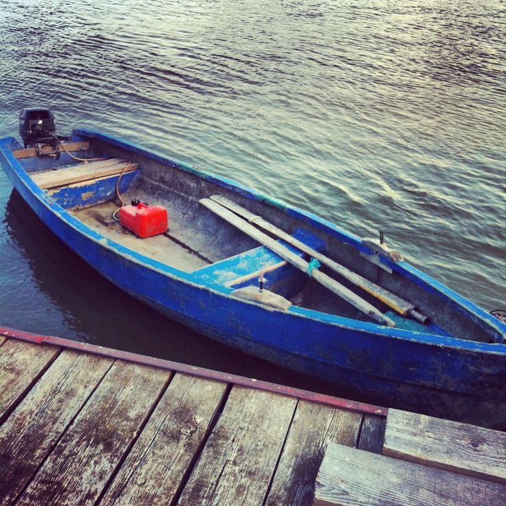 Blue boat on the Danube, Sulina arm http://www.hotelgggociman.ro/en.html