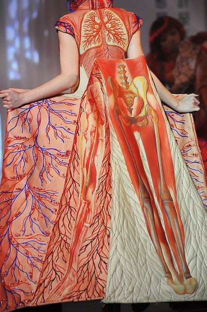 2010_USC_Fashion week_010 (by miyake juin)  This image of a beautiful anatomical ball gown by an apparently unknown designer was shared with me earlier in the week by another-masque and has been recently making the rounds various places on the internet - bioephemera, hautemacabre, etc.