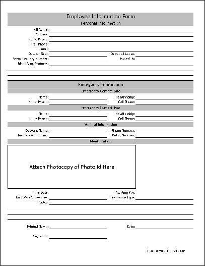 Free Basic Employee Information Form