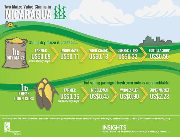 Two Maize Value Chains in Nicaragua[INFOGRAPHIC]