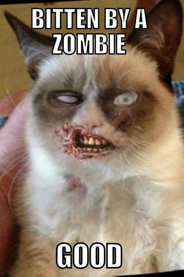 Even as a zombie, you are still grumpy