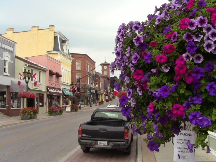 TP Entertainment and Productions: Newmarket's Famous Main St - Shopping, Services an...