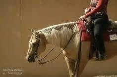 western horse mane braiding styles - Bing Images