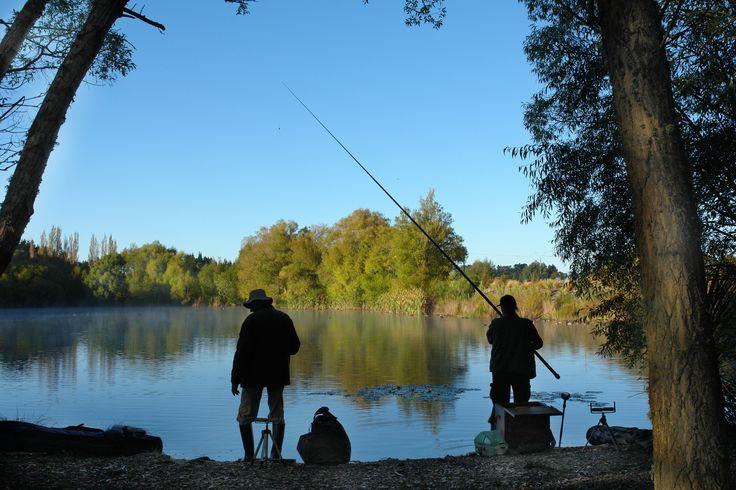 Fishing at Kaiapoi Lakes