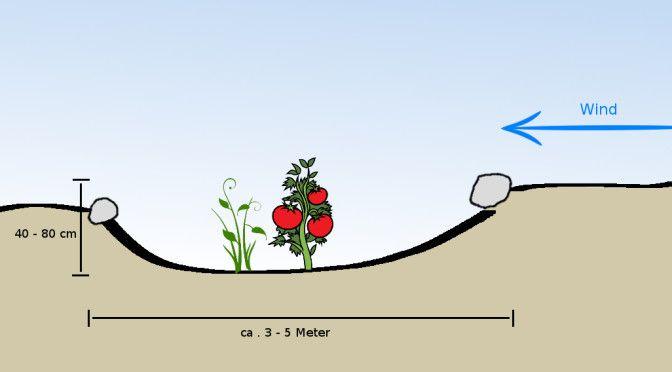 Kraterbeete waren ursprünglich in trockenen Gegenden mit viel Wind beliebt. Am Boden des Kraters bleibt die Erde feuchter, am Rand setzt man Pflanzen, die auch trockenen Boden mögen. Die Pflanzen am Boden haben es wärmer und stehen windgeschützt.