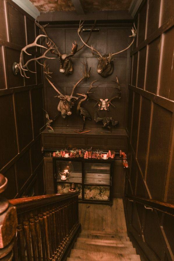 165 les meilleures images concernant cabinet de curiosit sur pinterest plumes cabinet de. Black Bedroom Furniture Sets. Home Design Ideas