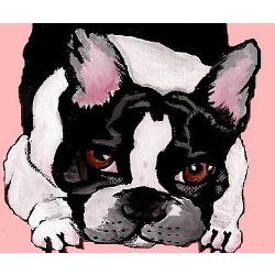 I want this as a cavas print... Looks exactly like Eddie!  French Bulldog Greeting Cards | Buy French Bulldog Cards