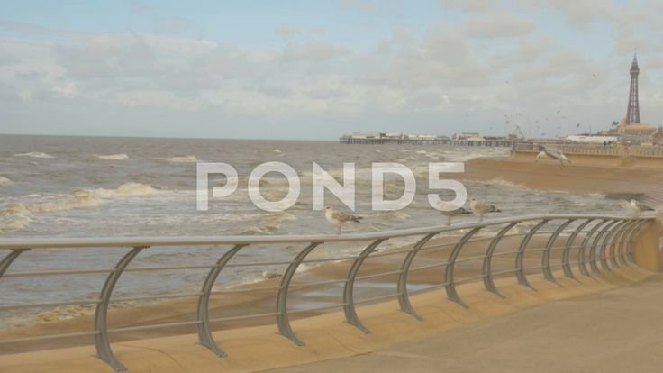 Seagulls Railing Beach Wave Fairground Pier Waterfront Blackpool Promenade Tower - Stock Footage | by RyanJonesFilms