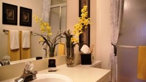 Bathroom Decorating Ideas for Small Apartments