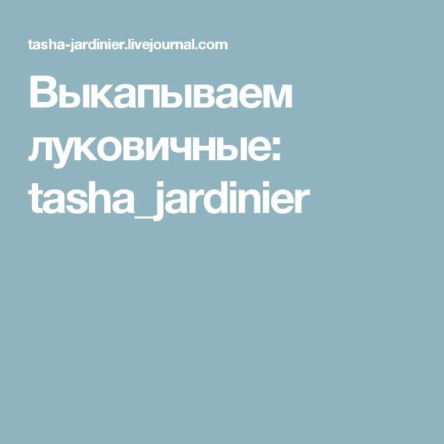 Выкапываем луковичные: tasha_jardinier