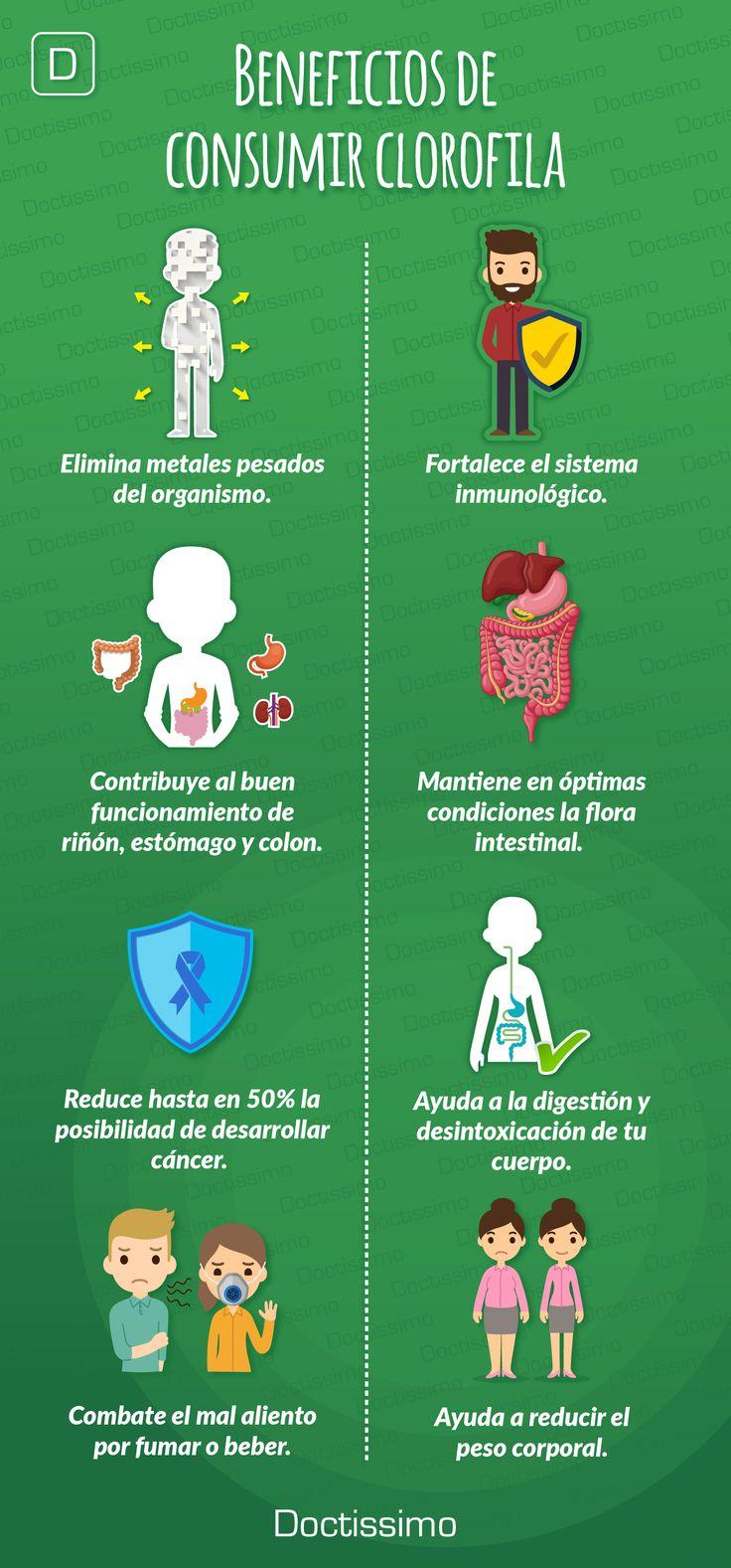Beneficios de tomar clorofila para tu salud.  #salud #clorofila #nutrición #bienestar