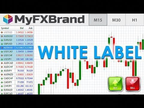 What is forex white label broker