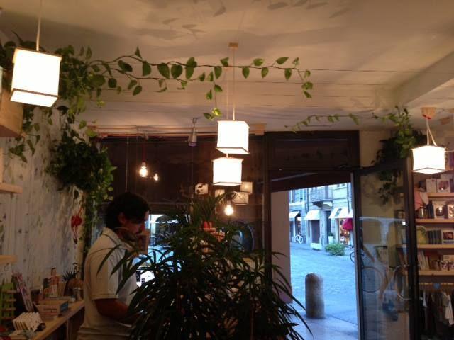 La nostra foresta radice-labirinto cresce! #madori #design #libreria #green