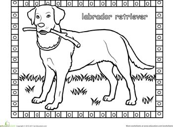 Worksheets: Labrador Coloring Page