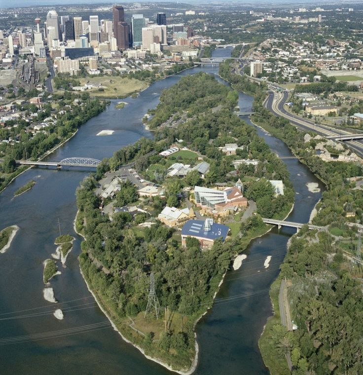 Calgary Zoo – From Flood to Flourish! Glad they were able to dig out from the flood and save the animals!