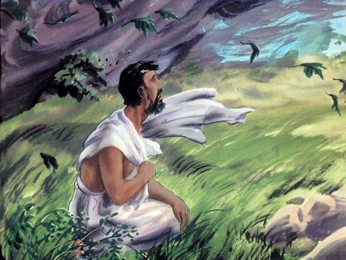 Afbeeldingsresultaat voor bijbel job