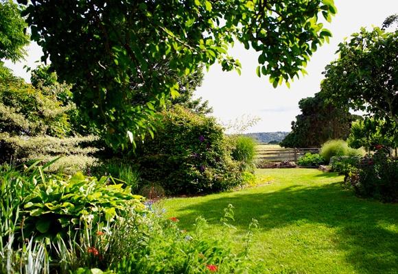 The Tasmanian landscape is the focus of much of artist Philip Wolfhagen's work. It also inspires his garden, an ever-changing masterpiece.Story: Amanda Ducker; Photography: Nick Watt