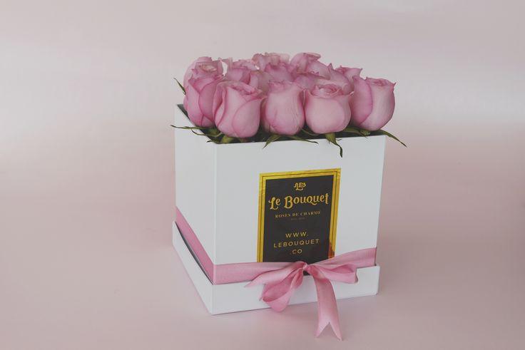 Presentación por 16 rosas tradicionales 💗 Le Bouquet