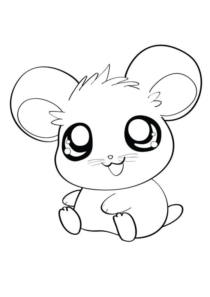 Dwarf Hamster Coloring Pages In 2021 Animal Coloring Pages Hamster Cartoon Easy Cartoon Drawings