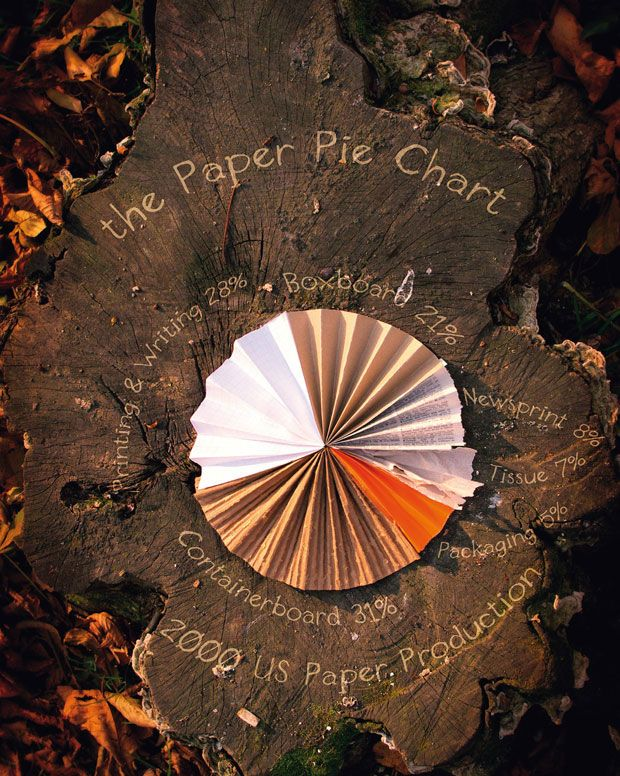 The Paper Pie Chart - Alexandra Muresan