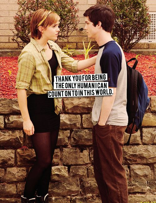 17 best images about perks of being a wallflower on