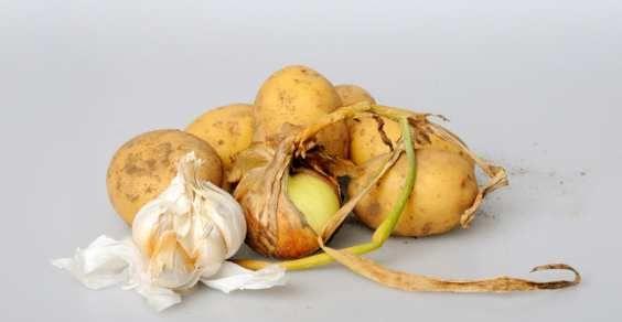 Voi come riuscite a non far germogliare aglio, cipolle e patate? Come conservarli se non si ha a disposizione  una cantina?
